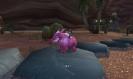 Pink elephant?!